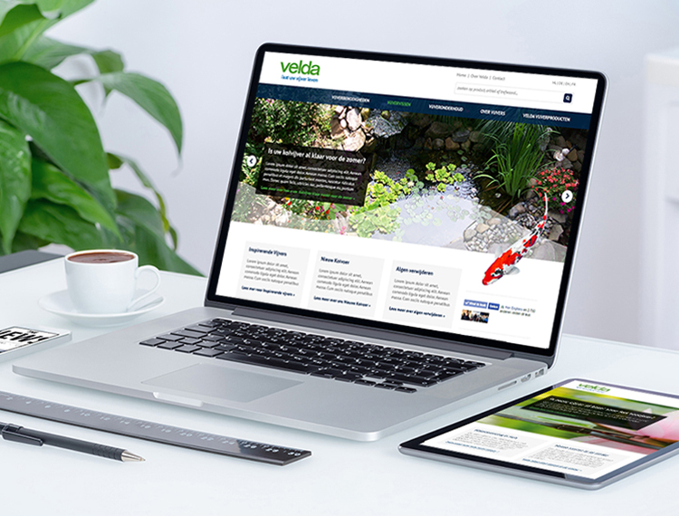 Ontwerp website Velda